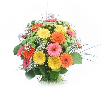 13 adet gerbera çiçegi buketi  Kars çiçek gönderme sitemiz güvenlidir