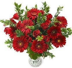 5 adet kirmizi gül 5 adet gerbera aranjmani  Kars çiçek mağazası , çiçekçi adresleri