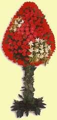 Kars 14 şubat sevgililer günü çiçek  dügün açilis çiçekleri  Kars hediye çiçek yolla