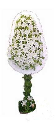 Kars güvenli kaliteli hızlı çiçek  nikah , dügün , açilis çiçek modeli  Kars çiçek gönderme sitemiz güvenlidir