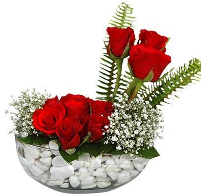 cam içerisinde 9 adet kirmizi gül  Kars İnternetten çiçek siparişi
