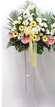 Kars çiçek gönderme sitemiz güvenlidir   perförje çiçegi dügün çiçekleri