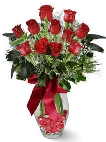9 adet gül  Kars yurtiçi ve yurtdışı çiçek siparişi  kirmizi gül