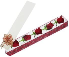 Kars yurtiçi ve yurtdışı çiçek siparişi  kutu içerisinde 5 adet kirmizi gül