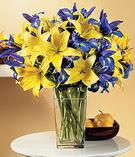 Kars çiçek , çiçekçi , çiçekçilik  Lilyum ve mevsim  çiçegi özel