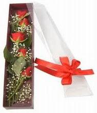 kutu içinde 5 adet kirmizi gül  Kars çiçek yolla , çiçek gönder , çiçekçi