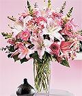 Kars online çiçek gönderme sipariş  Kazablanka biçme vazoda