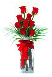 Kars anneler günü çiçek yolla  9 adet mika yada cam vazoda gül tanzimi