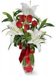 Kars İnternetten çiçek siparişi  5 adet kirmizi gül ve 3 kandil kazablanka