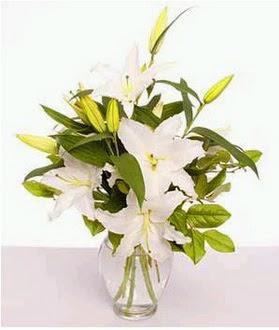 Kars 14 şubat sevgililer günü çiçek  2 dal cazablanca vazo çiçeği