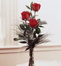 Kars yurtiçi ve yurtdışı çiçek siparişi  Vazoda 3 adet güzel gül