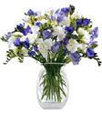 Kars internetten çiçek siparişi  Vazoda karisik özel frezyalar
