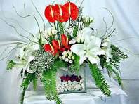 Kars çiçek siparişi sitesi  Anthurim Kazablanka  gül