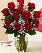 Sevgilime hediye 9 adet 1.ci kalite gül  Kars çiçek , çiçekçi , çiçekçilik