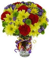 En güzel hediye karışık mevsim çiçeği  Kars çiçek mağazası , çiçekçi adresleri