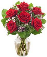 Kız arkadaşıma hediye 6 kırmızı gül  Kars çiçek yolla , çiçek gönder , çiçekçi
