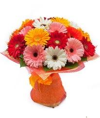 Renkli gerbera buketi  Kars çiçek , çiçekçi , çiçekçilik
