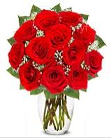 12 adet vazoda kıpkırmızı gül  Kars çiçek yolla