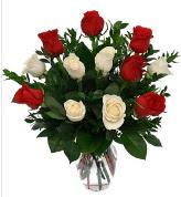 Vazo içerisinde 6 kırmızı 6 beyaz gül  Kars çiçek mağazası , çiçekçi adresleri