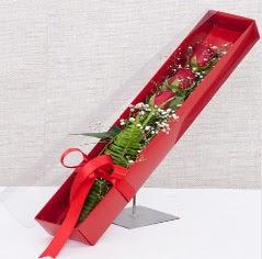 Kutu içerisinde 3 adet kırmızı gül  Kars çiçek gönderme sitemiz güvenlidir