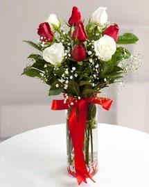 5 kırmızı 4 beyaz gül vazoda  Kars çiçek gönderme