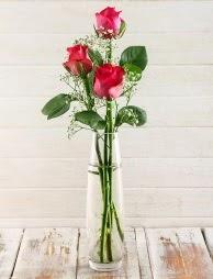 Cam içerisinde 3 kırmızı gül  Kars hediye sevgilime hediye çiçek