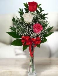 Camda 2 kırmızı 1 beyaz gül  Kars çiçek servisi , çiçekçi adresleri