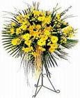 Kars internetten çiçek siparişi  Sari kazablanka Ferforje
