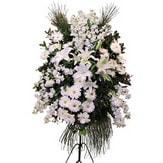 Kars çiçek yolla  Ferforje beyaz renkli kazablanka