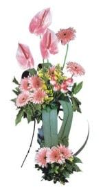 Kars çiçekçiler  Pembe Antoryum Harikalar Rüyasi