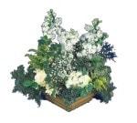 Kars İnternetten çiçek siparişi  Beyaz sebboy ve gül aranjmani
