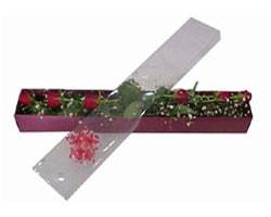 Kars çiçek , çiçekçi , çiçekçilik   6 adet kirmizi gül kutu içinde