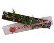Kars çiçek mağazası , çiçekçi adresleri  3 adet gül.kutu yaldizlidir.