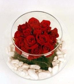 Cam fanusta 11 adet kırmızı gül  Kars 14 şubat sevgililer günü çiçek