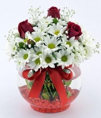Fanusta 3 Gül ve Papatya  Kars yurtiçi ve yurtdışı çiçek siparişi