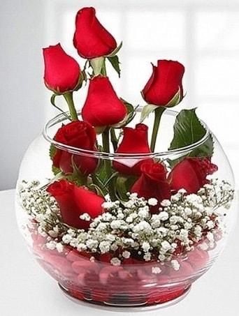 Kırmızı Mutluluk fanusta 9 kırmızı gül  Kars güvenli kaliteli hızlı çiçek