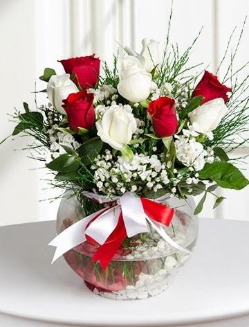 Aşk Küresi  5 beyaz 5 kırmızı gül fanusta  Kars yurtiçi ve yurtdışı çiçek siparişi