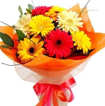 9 adet karışık gerbera buketi  Kars çiçek online çiçek siparişi