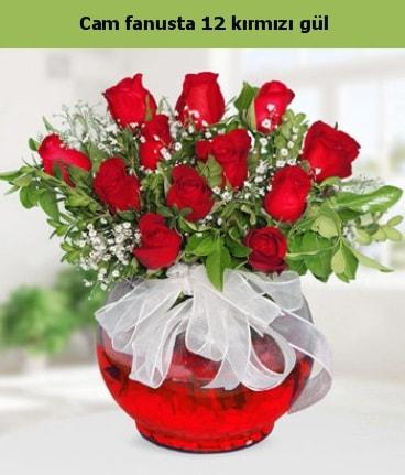 Cam içerisinde 12 adet kırmızı gül  Kars yurtiçi ve yurtdışı çiçek siparişi