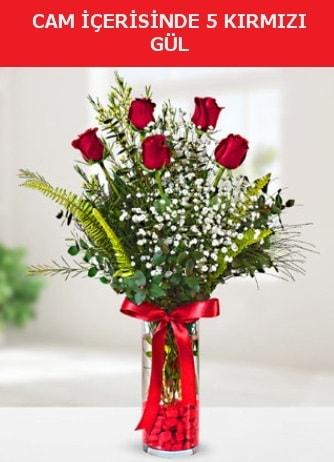 Cam içerisinde 5 adet kırmızı gül  Kars güvenli kaliteli hızlı çiçek