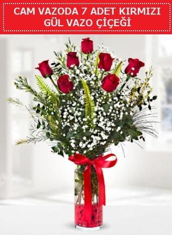 Cam vazoda 7 adet kırmızı gül çiçeği  Kars cicekciler , cicek siparisi
