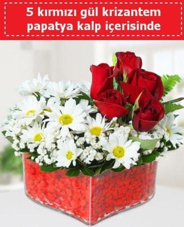 mika kalp içerisinde 5 kırmızı gül papatya  Kars 14 şubat sevgililer günü çiçek
