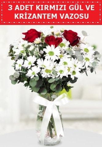 3 kırmızı gül ve camda krizantem çiçekleri  Kars 14 şubat sevgililer günü çiçek