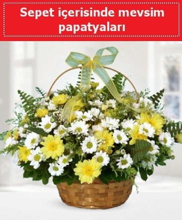 Sepet içerisinde mevsim papatyaları  Kars çiçek servisi , çiçekçi adresleri