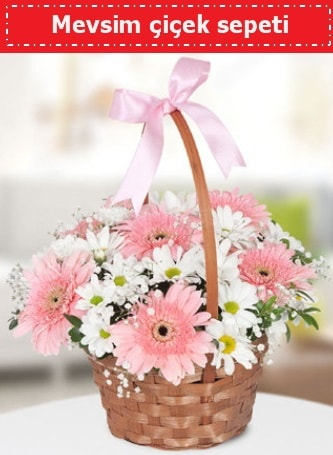 Mevsim kır çiçek sepeti  Kars çiçek online çiçek siparişi