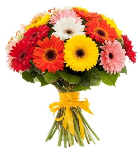 Gerbera demeti buketi  Kars hediye sevgilime hediye çiçek