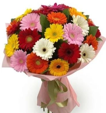 Karışık büyük boy gerbera çiçek buketi  Kars hediye sevgilime hediye çiçek